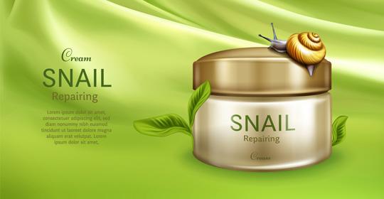 Cream Snail Bapak Ir. Purwoto